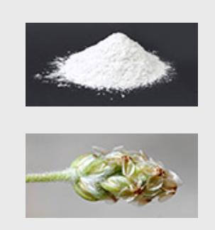 Hemapro Pills - hinta - finland - apteekki - myynti - tilaus